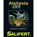 Salifert Aiptasia eXit
