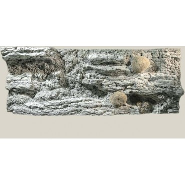 Back to Nature background reef 200x60