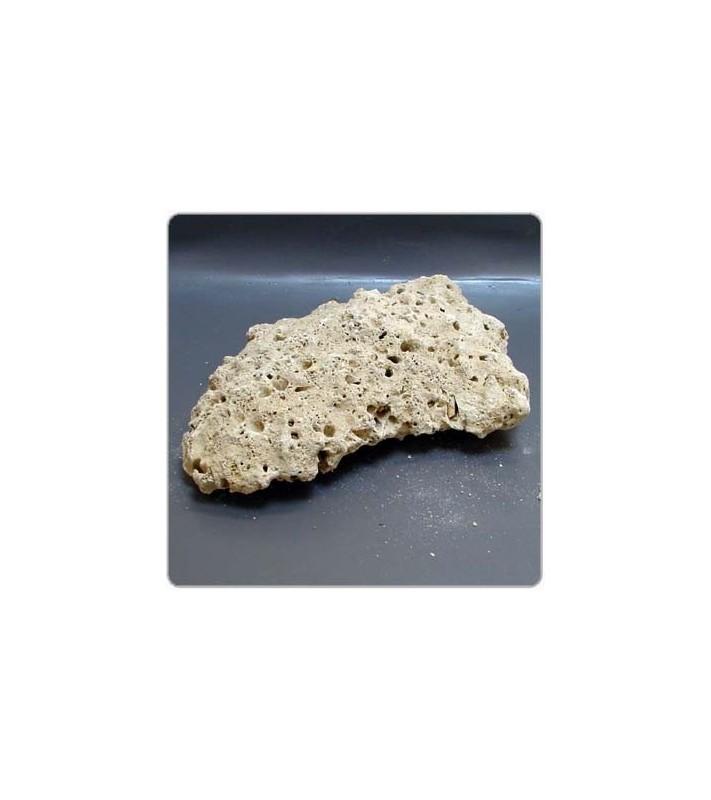 Tropheus Marine Reef Plates Rocks