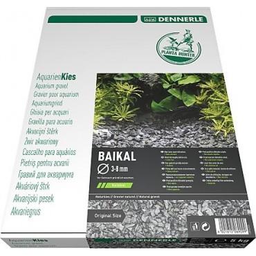 Dennerle Natural Gravel Plantahunter Baikal