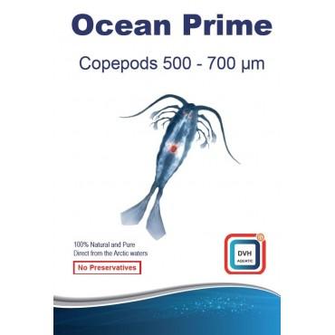 DVH Ocean Prime Copepods