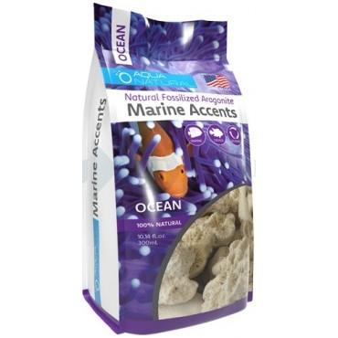 Calcean Marine Accents Ocean