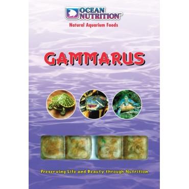 Ocean Nutrition Gammarus